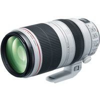 CanonEF 100-400mm f/4.5-5.6 L IS II USM Lens