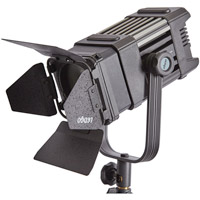 LED Go LG-D300 LED Fresnel Light 5600K with WiFi/DMX and Case