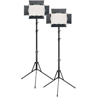 Ledgo 2 x LG-B560II LED Light 5600K with2 x Stands, 2 x AC Power Supply, 2 x Battery/Charger ,Case