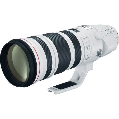 EF 200-400mm f/4L IS USM Lens with Internal 1.4x Extender
